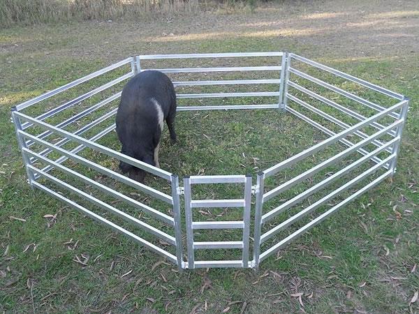 забор для животных картинки сделанные сделанные